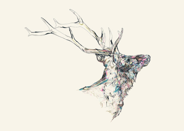 Susie Wright - Mineral Stag MMXIV