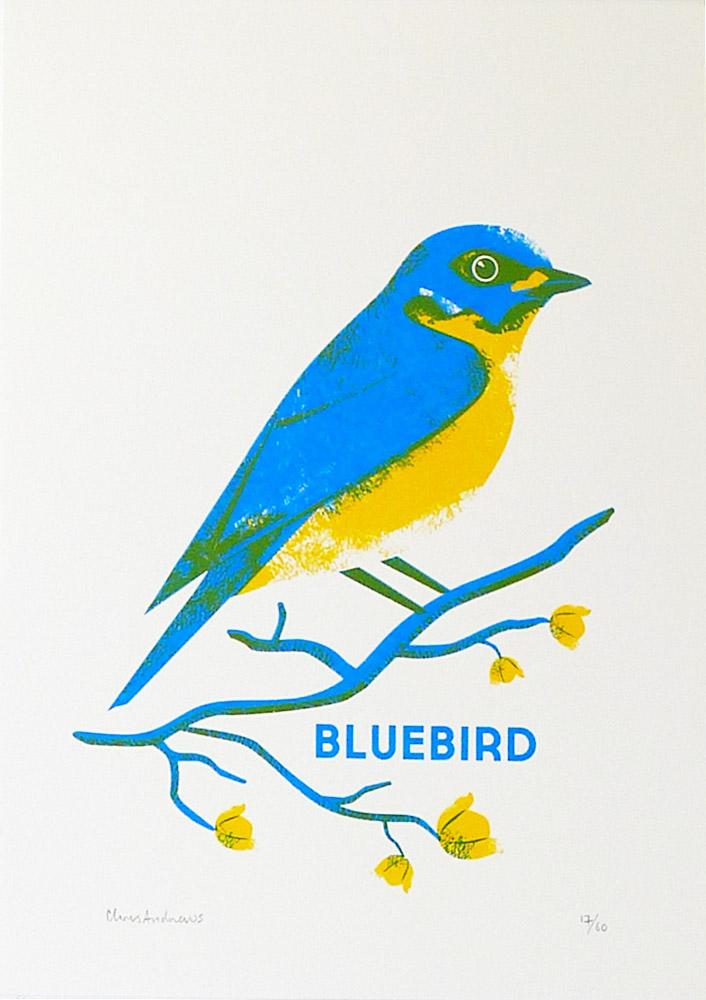 Chris-Andrews-Blue-Bird