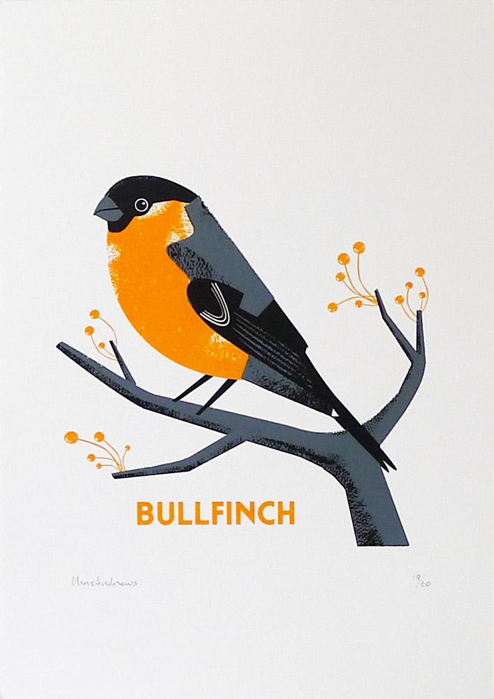 Chris-Andrews-Bullfinch