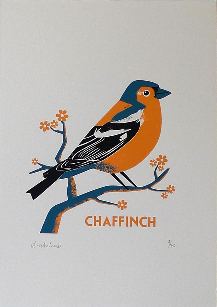 Chris-Andrews-Chaffinch