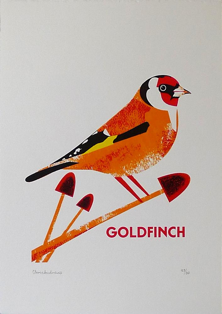 Chris-Andrews-Goldfinch