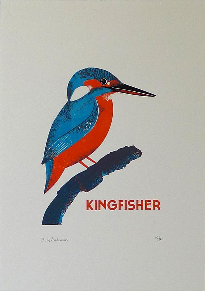 Chris-Andrews-Kingfisher