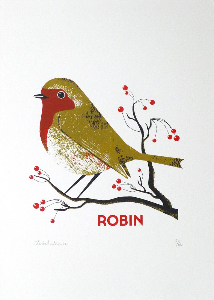 Chris-Andrews-Robin