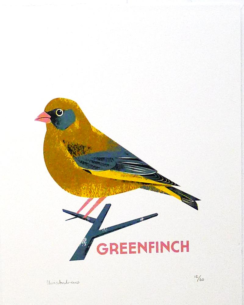 Chris-Andrews-Greenfinch