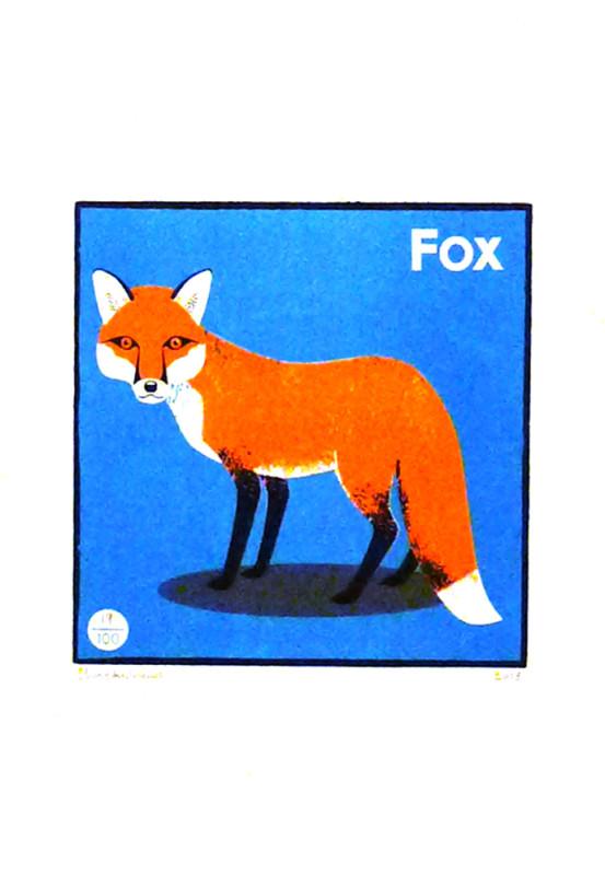 Chris-Andrews-Fox