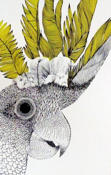 Hannah-O'Hare-Cockatoo