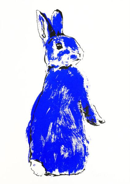 Tiff-Howick-Blue-Rabbit