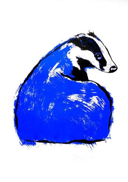 Tiff-Howick-Blue-Badger