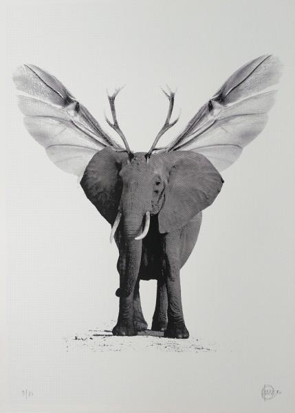 Craig-Keenan-Franks-Elephant