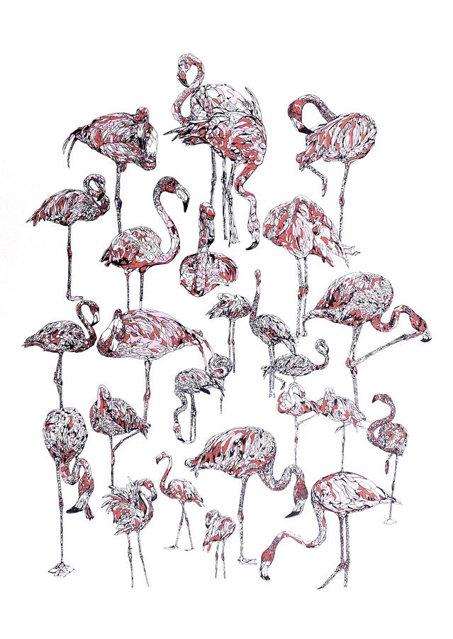 Susie-Wright-Flamingos