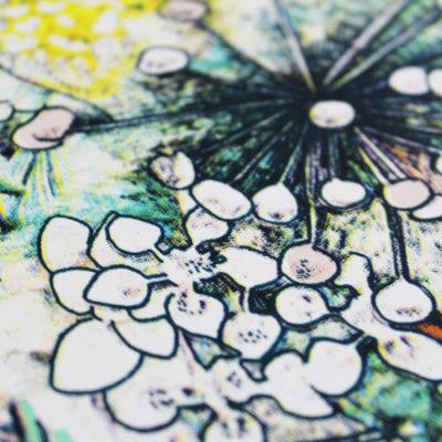 Lucille Clerc Jungle Book – Parrots Colour Edition Print Club London