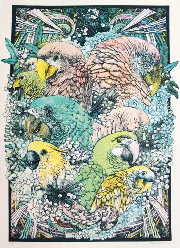 Lucille-Clerc-Jungle-Book-Parrots-Colour