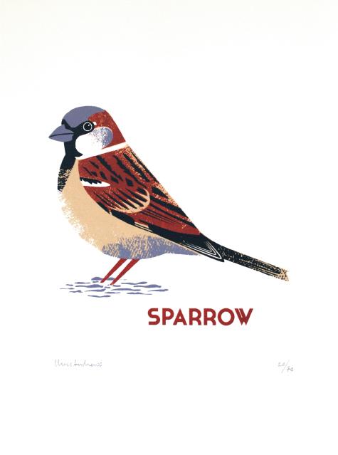 Chris Andrews – Sparrow