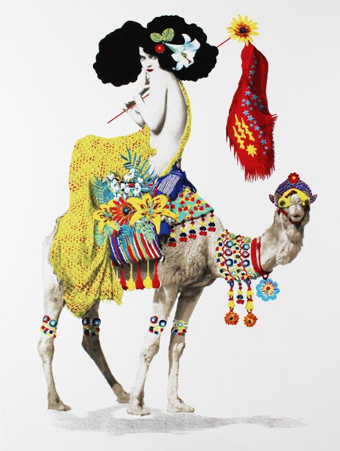 Jonathan-Reiner-Colonial-Beauty