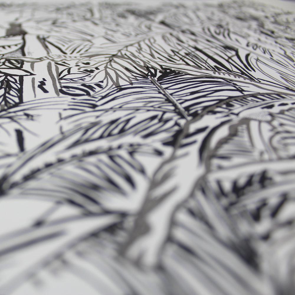 Susie Wright – Surveying The Daintree