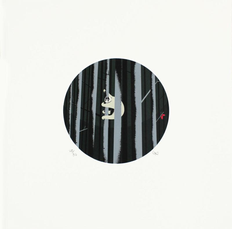 Tom Camp – Slow Loris