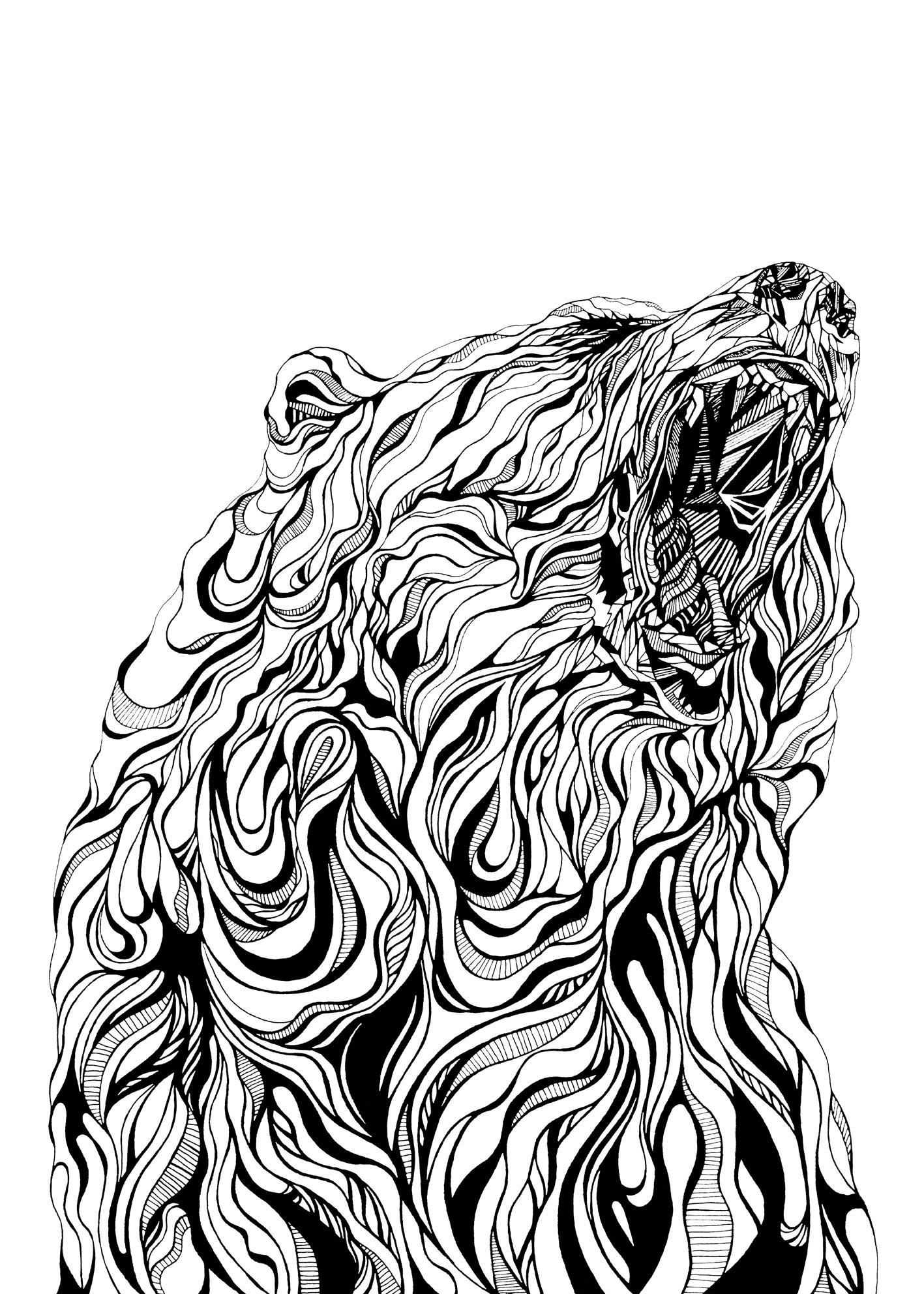 Claudine-O'Sullivan-Roar