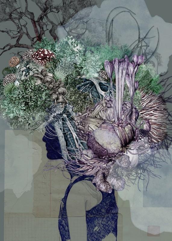 Lucille-Clerc-Kodama-Mangrove