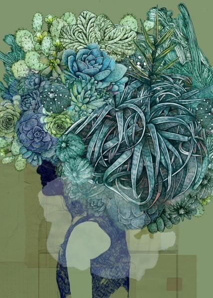 Lucille-Clerc-Kodama-Succulent