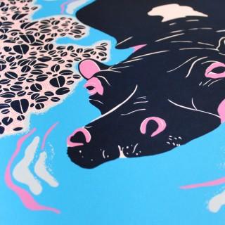 Claudia Borfiga – Hippo