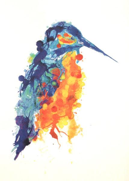 Gavin Dobson - Kingfisher
