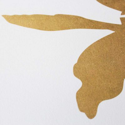 Superhero Rabbit – Gold Edition HAM Print Club London