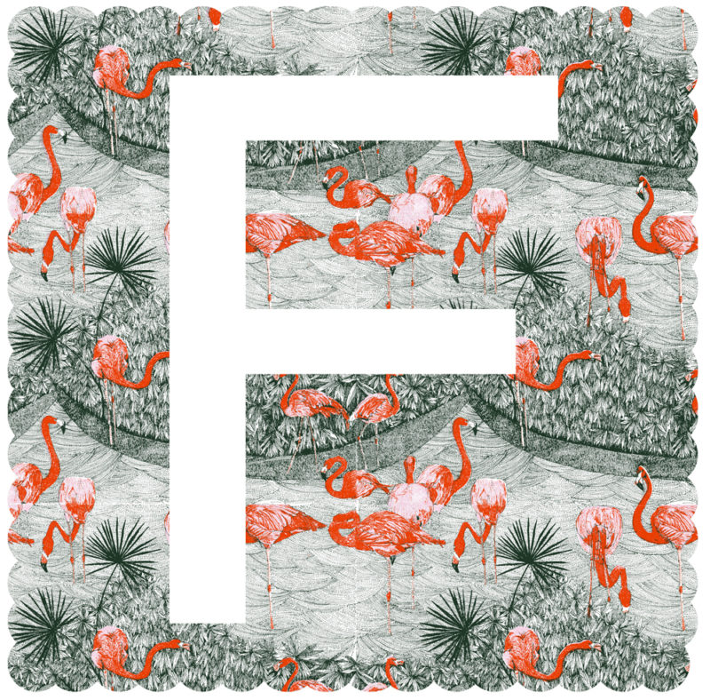 F Is For Flamingo Claire Halifax Print Club London