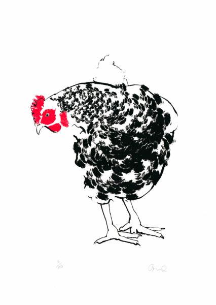 Black & White Chicken Tiff Howick Print Club London