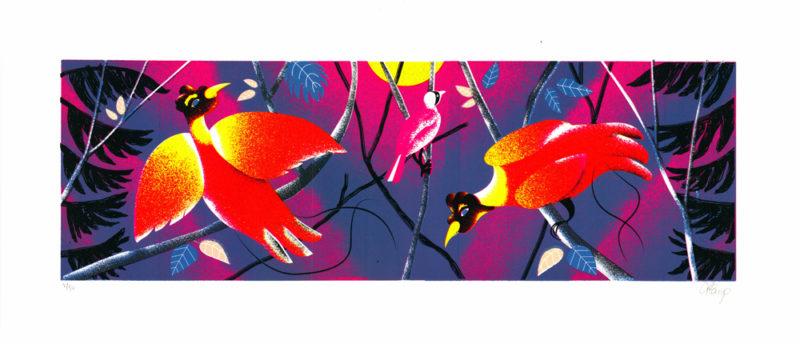 Birds of Paradise Tom Camp Print Club London