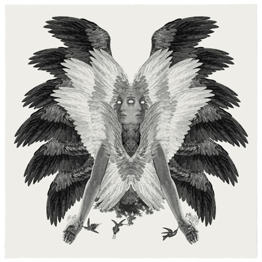 Colibri Dan Hillier Print Club London Screen Print