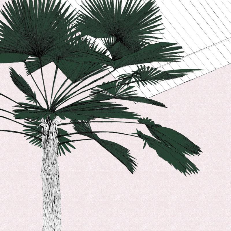 A Green Palms Blush Clare Halifax Print club London Screen Print