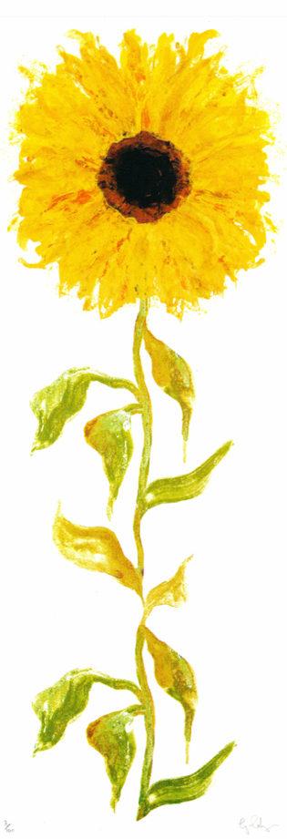 Sunflower Gavin Dobson Print Club London Screen Print