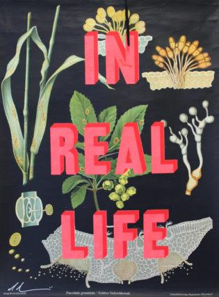 In Real Life Dave Buonaguidi Print Club London Screen Print