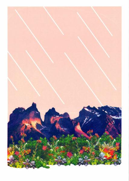 Succulent Valley Maria Luisa Rosemary Print Club London Screen Print