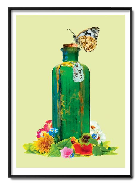 Alice in Wonderland Oli Fowler Conifer Print Club London Screen Print Blisters Paperback Edition