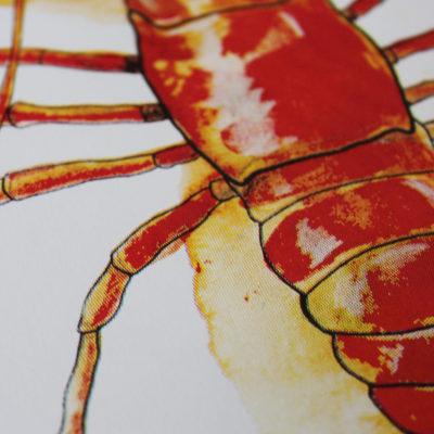 Lobster Gavin Dobson Print Club London Screen Print