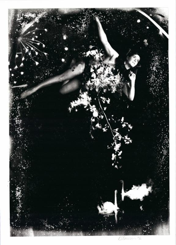 A Night at the Circus Rosie Emerson Print Club London Screen Print