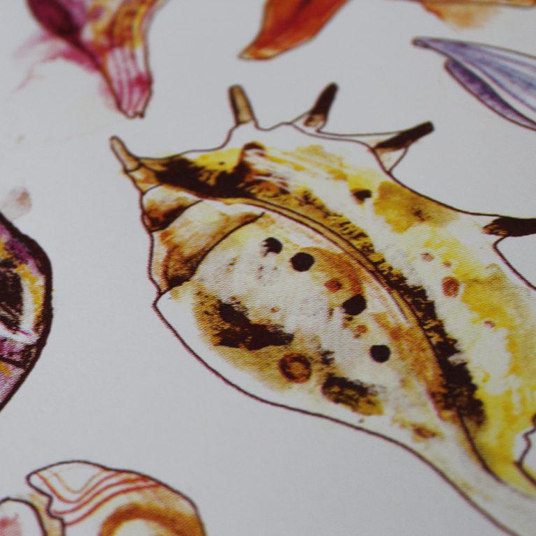 Seashells Gavin Dobson Print Club London Screen Print