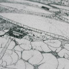Greenhouse Waterlilly Clare Halifax Print Club London Screen Print