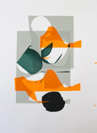 Monoprint 10 Jonathan Lawes Print Club London Screen Print