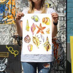 Gavin Dobson Seashells Print Club London