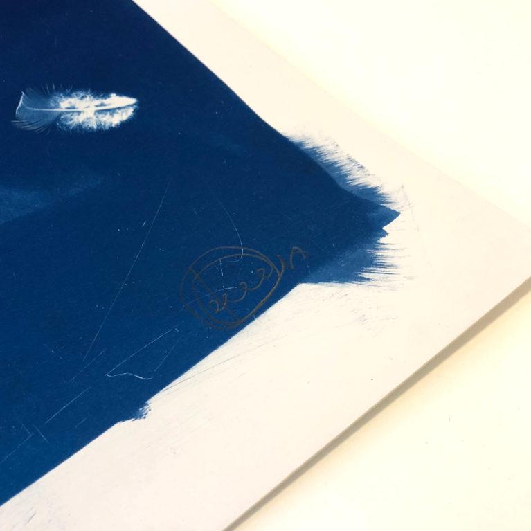 Falling with Feathers Craig Keenan Print Club London Screen Print